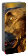 Lab Puppy At Sunset Portable Battery Charger