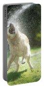 Labrador Retriever And Hose Portable Battery Charger
