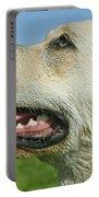 Labrador Retriever Dog Portable Battery Charger