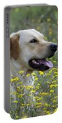 Labrador Retriever Dog Portable Battery Charger