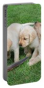 Labrador Retriever Puppies And Feather Portable Battery Charger