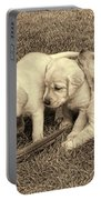Labrador Retriever Puppies And Feather Vintage Portable Battery Charger