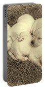 Labrador Retriever Puppies Nap Time Vintage Portable Battery Charger by Jennie Marie Schell