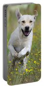 Labrador Running Portable Battery Charger