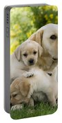 Labrador With Young Puppies Portable Battery Charger