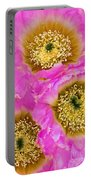 Lace Cactus Flowers Portable Battery Charger