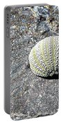 Lacy Shell On A Beachrock Portable Battery Charger
