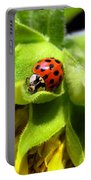 Ladybug And Sunflower Portable Battery Charger