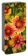 Lady Bird And Her Flowers Portable Battery Charger