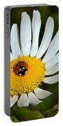 Lady Bug Bulls Eye  Portable Battery Charger
