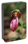 Lady Slipper At Moore State Park Close Up 2 Portable Battery Charger