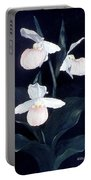 Lady Slipper Portable Battery Charger