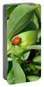 Ladybug Ladybug  Portable Battery Charger