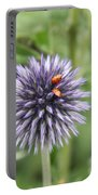 Ladybugs  Portable Battery Charger