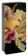 Laeliocattleya Lydia Hubbell Portable Battery Charger