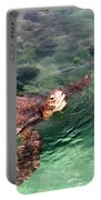 Lager Head Turtle 002 Portable Battery Charger