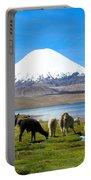 Lake Chungara Chilean Andes Portable Battery Charger by Kurt Van Wagner