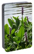 Lake Day Portable Battery Charger