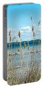 Lake Michigan Shore Grasses Portable Battery Charger