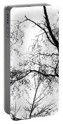 Lake - Tree  -  At The Lake By A Tree Portable Battery Charger
