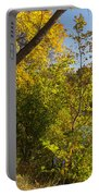 Lake Winona Autumn 14 Portable Battery Charger
