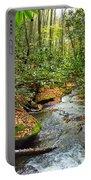 Lamance Creek  Portable Battery Charger