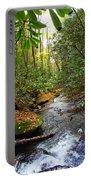 Lamance Creek Vertical Portable Battery Charger
