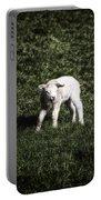Lamb Portable Battery Charger