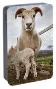Lamb On A Farm, Iceland Portable Battery Charger