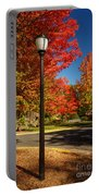 Lamp Post On The Corner Portable Battery Charger