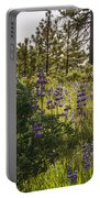 Land Of The Lupines Portable Battery Charger