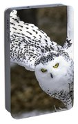 Landing Of The Snowy Owl Where Are You Harry Potter Portable Battery Charger