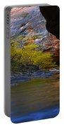 Landscape 319 Portable Battery Charger