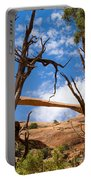 Landscape Arch - Arches National Park Portable Battery Charger
