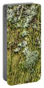 Larch Tree Beard Moss Portable Battery Charger