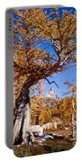Larch Tree Frames Prusik Peak Portable Battery Charger