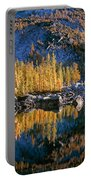 Larch Tree Reflection In Leprechaeun Lake  Portable Battery Charger
