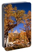 Larch Trees Frame Prusik Peak Portable Battery Charger