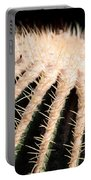 Large Cactus Ball Portable Battery Charger