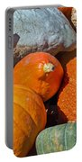 Large Edible Gourds Portable Battery Charger