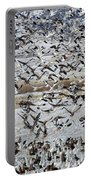Large Flocks Of Migratory Birds Stop Portable Battery Charger
