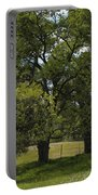Large Green Oak Trees Portable Battery Charger