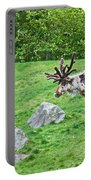 Large Reindeer Molting In Summer Pasture Art Prints Portable Battery Charger
