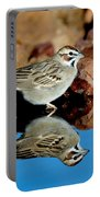 Lark Sparrow Chondestes Grammacus Portable Battery Charger
