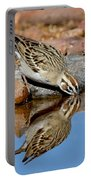 Lark Sparrow Drinking Portable Battery Charger