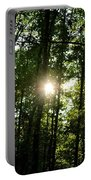 Last Light In The Forest Portable Battery Charger