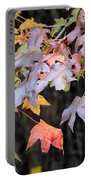 Late Autumn Maples Portable Battery Charger