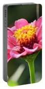 Late Bloomer Portable Battery Charger