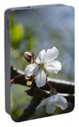 Late Spring Blossom Portable Battery Charger