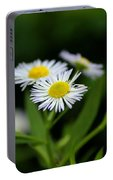 Late Summer Bloom Portable Battery Charger